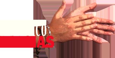 Logo Flamenco Palmas