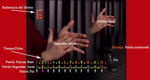 Captura del DVD Aprende y Practica las palmas